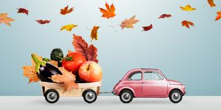 Autumn food delivery Royalty Free Stock Image