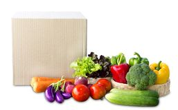 Food Delivery service: Vegetable delivery at home online order f. Or cooking and packages box with blank for text. On white background. With clipping path stock photo