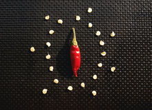 Food design with seeds around a red chili Royalty Free Stock Photography