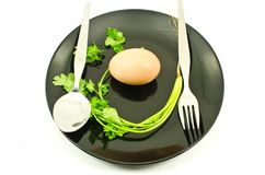 Food on dish isolated. Royalty Free Stock Photo
