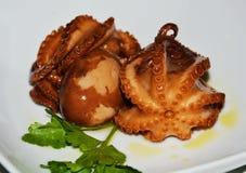 Food dish. Octopus Stock Photos