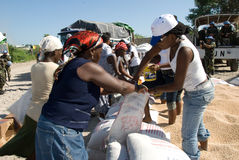 Food Distribution. September 30, 2008 - A volunteer in Gonaives, Haiti, helps to distribute tons of beans and cooking oil at a food distribution for victims of Royalty Free Stock Image