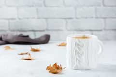 Food and drink, still life concept. Big white mug with hot tea infusion beverage to warm in a cold winter and autumn days. Copy. Space background stock image