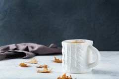 Food and drink, still life concept. Big white mug with hot tea infusion beverage to warm in a cold winter and autumn days. Copy. Space background royalty free stock image