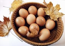 Eggs plate leaf braun color table white background close-up food healthy Royalty Free Stock Photography