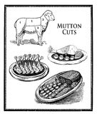 Food engraving collage, mutton cuts and food presentation Stock Photo