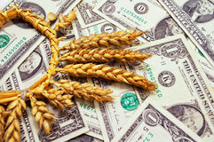 Food expenses Stock Photography