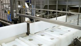 Food factory automated robotic conveyor line stock photography