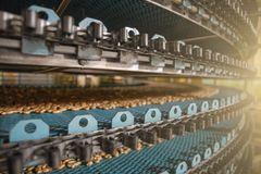 Food factory fabrication, industrial conveyor belt or line with process of preparation of sweet cookies, food production. Food factory fabrication, industrial royalty free stock photos