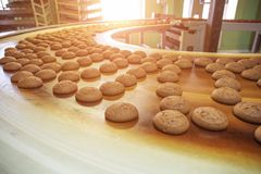 Food factory, industrial conveyor belt or line with process of preparation of sweet cookies, bakery and food production concept. Toned stock image