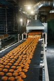Food factory, production line or conveyor belt with fresh baked cookies. Modern automated confectionery and bakery stock image