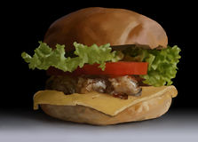 Food, fast food, burgers, salads, chicken, steak, cheese, tomato Royalty Free Stock Photos