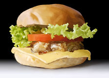 Food, fast food, burgers, salads, chicken, steak, cheese, tomato Stock Photos
