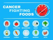 Food fighting cancer infographic.Vector. Flat cartoon character illustration icon design.Isolated on white background.Cancer,food,nutrition,healthcare concept Stock Image