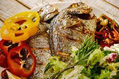 Food fish fresh dorado, meal seafood dinner,  raw bream. Food fish fresh dorado, meal seafood dinner with vegetables,  raw bream stock image