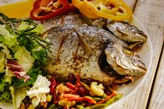 Food fish fresh dorado, meal seafood dinner, cooking gourmet. Food fish fresh dorado, meal seafood dinner with vegetables, cooking gourmet royalty free stock photo