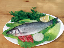 Food fish sea bass Royalty Free Stock Photo