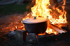 Food in the forest on fire, healthy camping royalty free stock photo