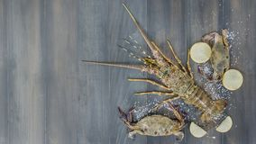 Food frame with crustacean. Lobster, crab, lemon and salt on background stock images
