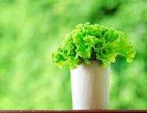 Fresh lettuce in paper bag Stock Images
