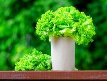 Fresh lettuce in paper bag Royalty Free Stock Photo