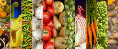 Food - Fresh Vegetables - Page Header. Fresh Vegetables - website header panel Royalty Free Stock Photography