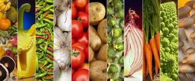 Food - Fresh Vegetables - Page Header. Fresh Vegetables - website header panel royalty free stock photography