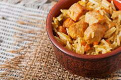 Food - fried pieces of turkey poultry meat with rice. Royalty Free Stock Photography