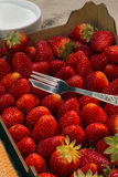 Food - Fruit - Fresh Strawberries Stock Images