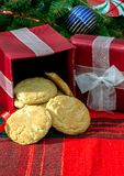 Food gifts from the kitchen. Are the most delicious. Here we have a red box of home made snicker-doodles ready to be shared for the holidays Stock Photography