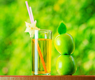 Glass of apple juice in a garden.  Royalty Free Stock Image