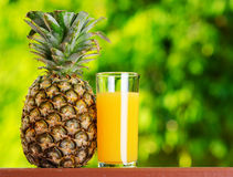 Glass of pineapple juice in a garden Stock Photography