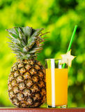 Glass of pineapple juice in a garden Royalty Free Stock Photos