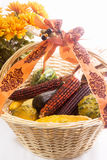 Food gourds and indian corn in a wooden basket Royalty Free Stock Image