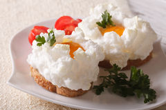 Food gourmet sandwiches with eggs Orsini closeup. Horizontal Royalty Free Stock Image