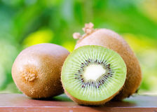 Green kiwi in the garden Royalty Free Stock Photos