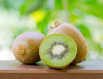 Green kiwi in the garden Stock Photography