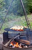 Food on a Grill Stock Photography