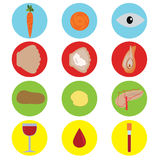 Food for health. Set icons Stock Images