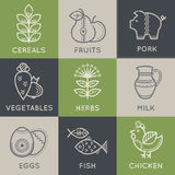 Food icons in linear ethnic style Royalty Free Stock Images