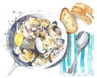 Food illustration seafood clams mussels stew watercolor painting isolated on white background Royalty Free Stock Photos
