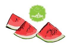 Three cartoon hand drawn melon pieces isolated on white. Watermelon retro store label badge. stock illustration
