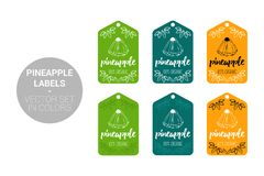 Pineapple fruit Eco labels vector set in green, dark green and orange colors. stock illustration