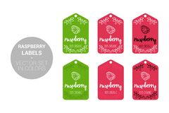 Raspberry fruit Natural store labels set in green, red colors. vector illustration