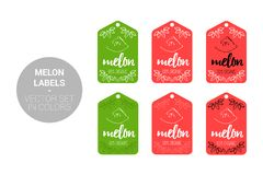 Melon fruit Natural store labels set in green, red colors. royalty free illustration