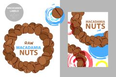 Raw macadamia nuts label. Creative colorful badge with semicircle of nuts. Circle of brown hand drawn nuts vector illustration