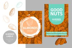 Almonds labels with brush stroke elements and cartoon drawn nut texture. product Badge with nut silhouettes. Almonds labels with brush stroke elements and vector illustration