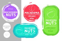 Macadamia nuts colorful label set. Raw organic nuts Badge shapes. Creative Nut tags. stock illustration