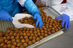 Food industry. Meat balls on food conveyor ready for packaging Stock Images