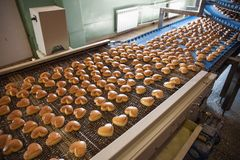 Food industry. Production line or conveyor belt with cookies in confectionary food factory or bakery, automated preparing. Food industry. Production line or royalty free stock photos